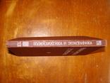 Нумизматика и Эпиграфика ХII (72), фото №3