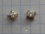 Гвоздики с бриллиантами, фото №2