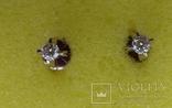 Гвоздики с бриллиантами, фото №13