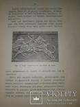 1906 Библия и Вавилон, фото №8