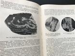 1952 Белянкин. Петрография технического камня, фото №9
