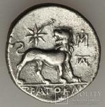 Аполлон Лев ( 280-200 р. до н.е ) Мілет, фото №3