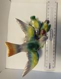 Птица с птенцами, фото №7