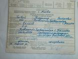 1963 Личная карточка водителя Шофер-профессионал+ Талон+права на шесть категорий, фото №3
