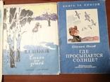 Детские книги 13 штук, фото №6
