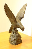 Орел, фото №9
