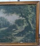 Вид в Павловском парке Репродукция на ткани, фото №8