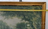 Вид в Павловском парке Репродукция на ткани, фото №10