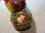 Швейцарский колокольчик, фото №3