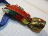 Швейцарский колокольчик, фото №5