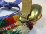 Швейцарский колокольчик, фото №12