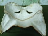 Новогодняя маска,ЛИСИЧКА,папье-маше СССР., фото №12