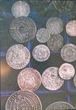 Каталог польско-литовских монет обращавшшихся на Украине в 14-18 веках фото 7