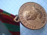 Медаль 13 За доблестный труд в ВОВ, фото №4