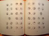 Монеты Московской Руси.1981 г.,20700 тираж., фото №9