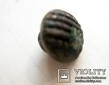 Старовинний свіцький гудзик 14, фото №2