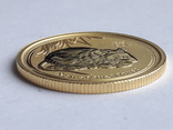 25 долл. золото 1/4 унции(999.9), фото №9