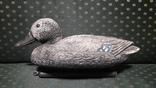 Подсадная утка, селезень., фото №5