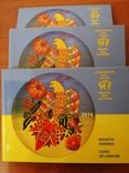 Набор обиходных монет НБУ 2014 года 3 штуки, фото №4