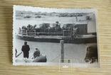 Фото Хлебоуборка 1954 год, фото №2