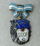 Орден Материнская слава 1 и 2 степень СССР. Книжка., фото №5