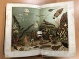 Большая энциклопедия. Том 1. 1900 год., фото №11