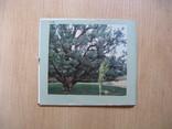 Фотоальбом: Хортица, 1970, Уменьшенный формат, фото №7