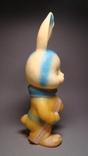 Заяц-лыжник, фото №5