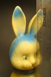 Заяц-лыжник, фото №7