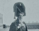 Дворцовый гренадер, фото №3