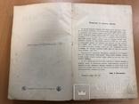 История земли. Неймар. Том 1. 1897 год. СПБ, фото №8