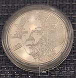 5 евро Нидерланды, 2003год, серебро, фото №2