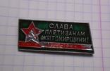 Знак Слава партизанам Житомирщини, Житомир, фото №2