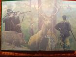 Выбор И Применение Охотничьего Оружия.2005 г.,5000 экз.., фото №3