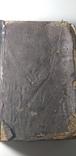 Русский огород Р.И. Шредер с печатью Одесского книжного склада., фото №6