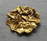 Золотая накладка с крепежными элементами ( усиками )., фото №5