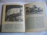 Амфоры , затонувшие  корабли , затопленные  города, фото №10