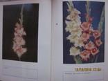 Гладиолусы и тюльпаны., фото №5