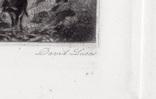 """Гравюра. Дж. Констебл - Лукас. """"Хэмпстед-Хит."""". До 1840 года. (42,8 на 29 см). Оригинал. фото 6"""