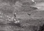 """Гравюра. Дж. Констебл - Лукас. """"Хэмпстед-Хит"""". До 1840 года. (42,8 на 29 см). Оригинал. фото 3"""