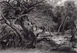 """Гравюра. Дж. Констебл - Лукас. """"Раненый олень"""". До 1840 года. (42,8 на 29 см). Оригинал."""