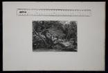 """Гравюра. Дж. Констебл - Лукас. """"Раненый олень"""". До 1840 года. (42,8 на 29 см). Оригинал. фото 8"""