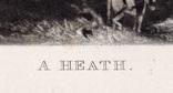 """Гравюра. Дж. Констебл - Лукас. """" Вереск"""". До 1840 года. (42,8 на 29 см). Оригинал. фото 5"""