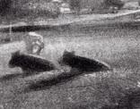"""Гравюра. Дж. Констебл - Лукас. """"Летний вечер"""". До 1840 года. (42,8 на 29 см). Оригинал. фото 3"""