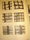 Определитель древесины голосеменных по микроскопическим признакам., фото №5
