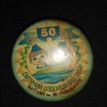 Знак Пионерия  Детский оздоровительный лагерь ВАТ ДМЗ им. Петровского Днепропетровск, фото №2