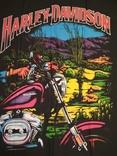 18. Баннер Harley-Davidson, 136x100см, новый, фото №4