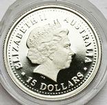 15 долларов 2007 года. Австралия. Платина 1/10 oz., фото №3