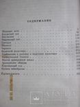 Н.С.Лесков. 6 томов., фото №8