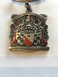 Знак Стюарда RBMI 1971, фото №3